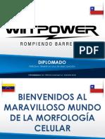 DIPLOMADO MORFOLOGIA CELULAR HECTOR MORANTE.pdf