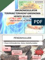 Efek immunomodulator teripang terhadap karsinoma hepatoseluler