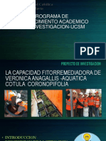 LA CAPACIDAD FITORREMEDIADORA DE  VERONICA ANAGALLIS -AQUATICA COTULA  CORONOPIFOLIA.pptx