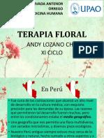 ppt Flores de Bach.pdf