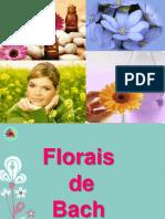 Florais de Bach_itv