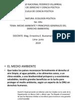 TEMA MEDIO AMBIENTE  Y PRINCIPIOS GENERALES DEL DERECHO AMBIENTAL