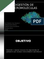 DIGESTIÓN DE MACROMOLÉCULAS.pptx