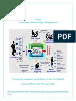 CRM CarmineDArconte2014 (1)