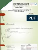 TdR EstudioImpactoAmbiental IV