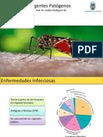 Agentes Patogenos e Inmunidad Innata