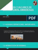 NATURALEZA Y ALCANCE DE LOS PROBLEMAS AMBIENTALES