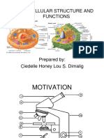 CELL__STRUCTURE_AND_FUNCTION.ppt