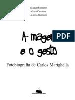 [Vladimir_Sacchetta;_Marcia_Camargos;_Gilberto_Mar(z-lib.org).pdf