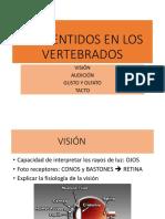 2 LOS SENTIDOS EN LOS VERTEBRADOS.pptx