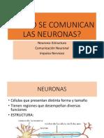 4 CÓMO SE COMUNICAN LAS NEURONAS