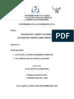 MANEJO DE CARNET MATERNO Y FORMULARIO PERINATALEXPODOSRUPO3