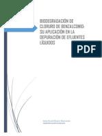 BIODEGRADACIÓN DE CLORURO DE BENZALCONIO SU APLICACIÓN EN LA DEPURACIÓN DE EFLUENTES LÍQUIDOS.pdf
