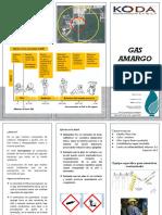 TRIPTICO GAS AMARGO