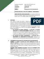 Nulidad de Actos Procesales - Nerida Garcia Barahona - Cautelar