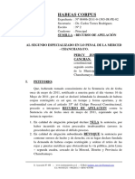 Recurso de Apelacion de Sentencia - Habeas Corpus 4