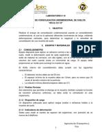 GUÍAS CONSOLIDACIÓN (2)