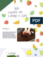 Adubação orgânica em Laranja e Café