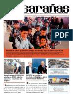 Periodico Musarañas