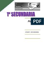 1º ALGEBRA Y ARITMETICA.pdf