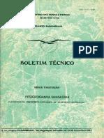 RadamBrasil Vegetação.pdf