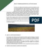 CERTIFICACIÓN ORGÁNICA Y COMERCIALIZACIÓN EN EL CULTIVO DE QUINUA