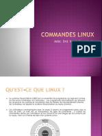 RIL_TP5(comenzi linux).pdf