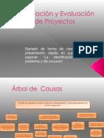 Ejemplo 1  de arboles para la presentación.pptx