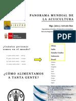 PANORAMA MUNDIAL DE LA ACUICULTURA Y MANEJO DE PECES AMAZONICOS.pptx