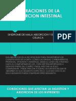 ALTERACIONES DE LA ABSORCION INTESTINAL