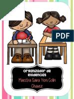 ORGANIZADOR DE EVIDENCIAS.pdf