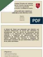 Cortinas Rompevientos.pptx