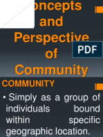 Concepts and Perspective of Community