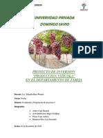 proyecto FINAL DE INVERSION UVA DE MESA