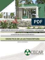 DIDACTICA DE LA LECTOESCRITURA_DIDACTICA DE LA LECTOESCRITURA