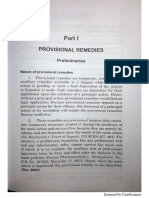 Provisional Remedies