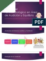 Quehacer Fonoaudiológico en Área de Audición y Equilibrio (1)