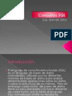 ConsultasBasicas SQL2005