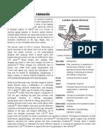 Lumbar_spinal_stenosis
