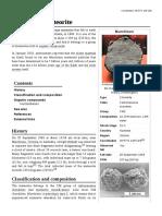 Murchison_meteorite