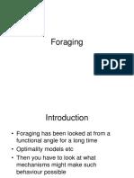 3906ac_foraging