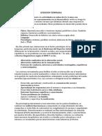 ATENCIÓN TEMPRANA.docx