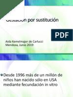 gestación por sustitución MENDOZA 2019