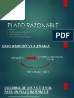 PLAZO RAZONABLE