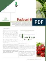 19006-ficha-tecnica-fosfacel