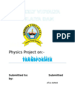 500273237project_phy.doc
