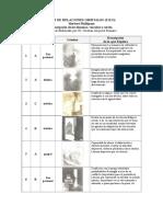 Descripcion de laminas, vinculos y series (TRO)