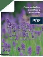 como multiplicar aromaticas y medicinales sepulveda_revista_81_fyd-5_0