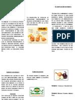 niño23456.pdf