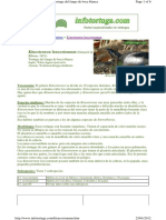 Kinosternon leucostomum